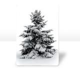Standard Magnet -  magnet-standard - $7.99 - designer themes available