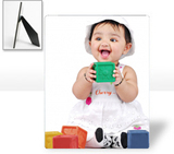 8x10 Photo Panel -  photo-panel-8x10 - $30.99 - 